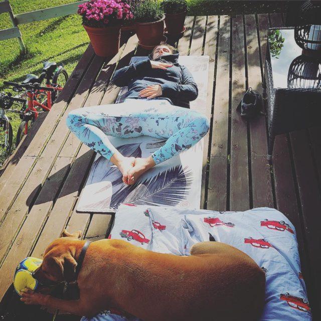 Vr sommarhund hayleythequeendog  lojal som f nr det vankashellip
